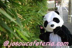 人間の世界に降り立つパンダ! 笹の葉目指してLet´s Go~♪ ぐるみんちゃん編